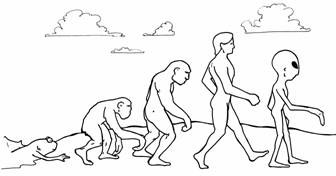 creationism evolution